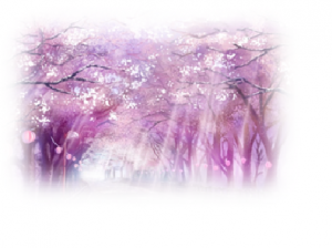 Être Soi - Tel le cerisier japonais, se découvrir c'est renaitre à nouveau, c'est ouvrir ses portes à une autre Lumière...